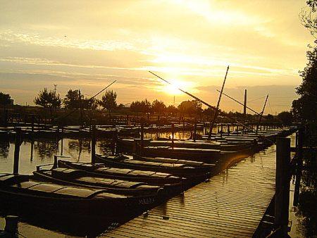 Puerto de catarroja parc natural de l 39 albufera - El tiempo en catarroja valencia ...